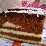Vajkrémes csokis süti 2