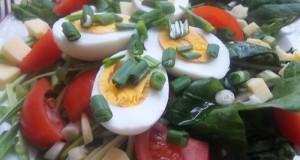 Medvehagymás saláta